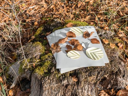 Papier und Blätter